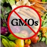 Just Say No to GMO !
