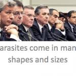 Parasites of Wall Street